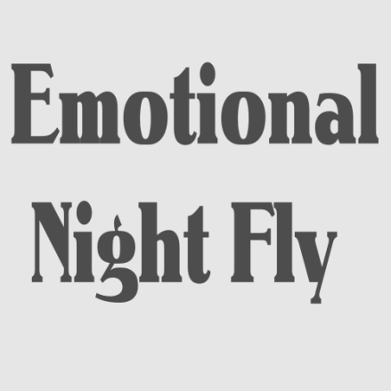 Fatalgroove - Emotional Night Fly